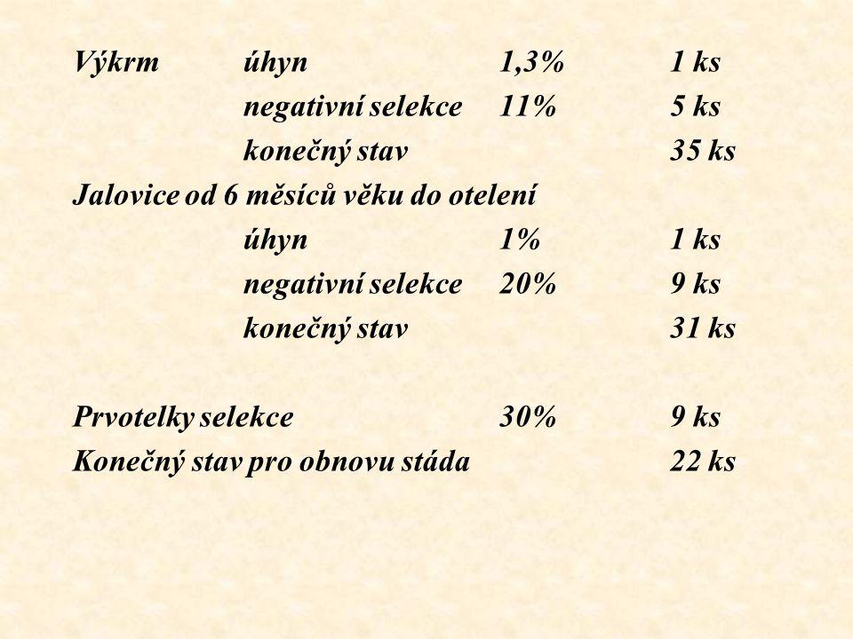 Výkrm úhyn 1,3% 1 ks negativní selekce 11% 5 ks. konečný stav 35 ks. Jalovice od 6 měsíců věku do otelení.
