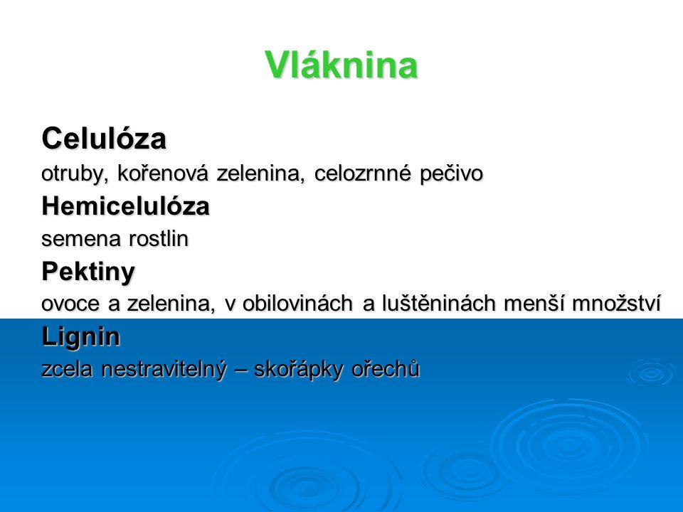 Vláknina Celulóza Hemicelulóza Pektiny Lignin