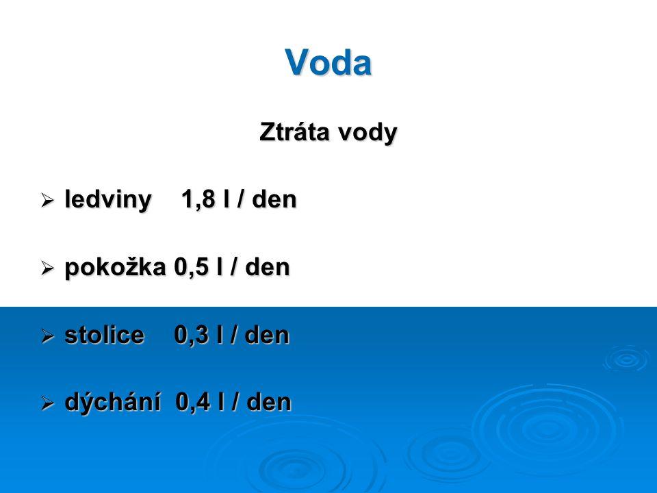 Voda Ztráta vody ledviny 1,8 l / den pokožka 0,5 l / den