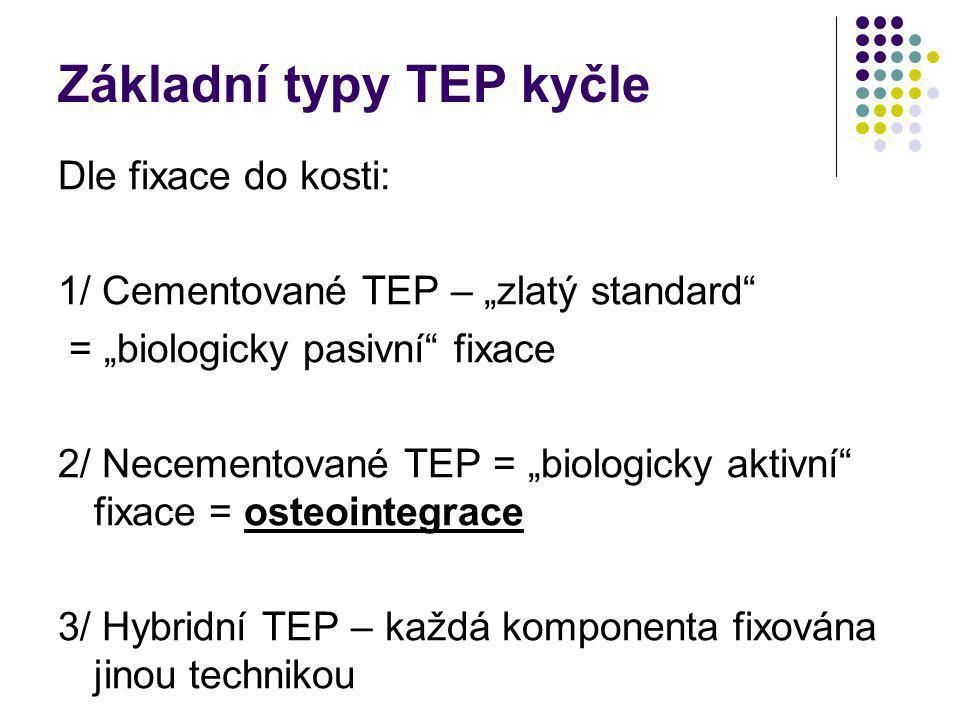 Základní typy TEP kyčle