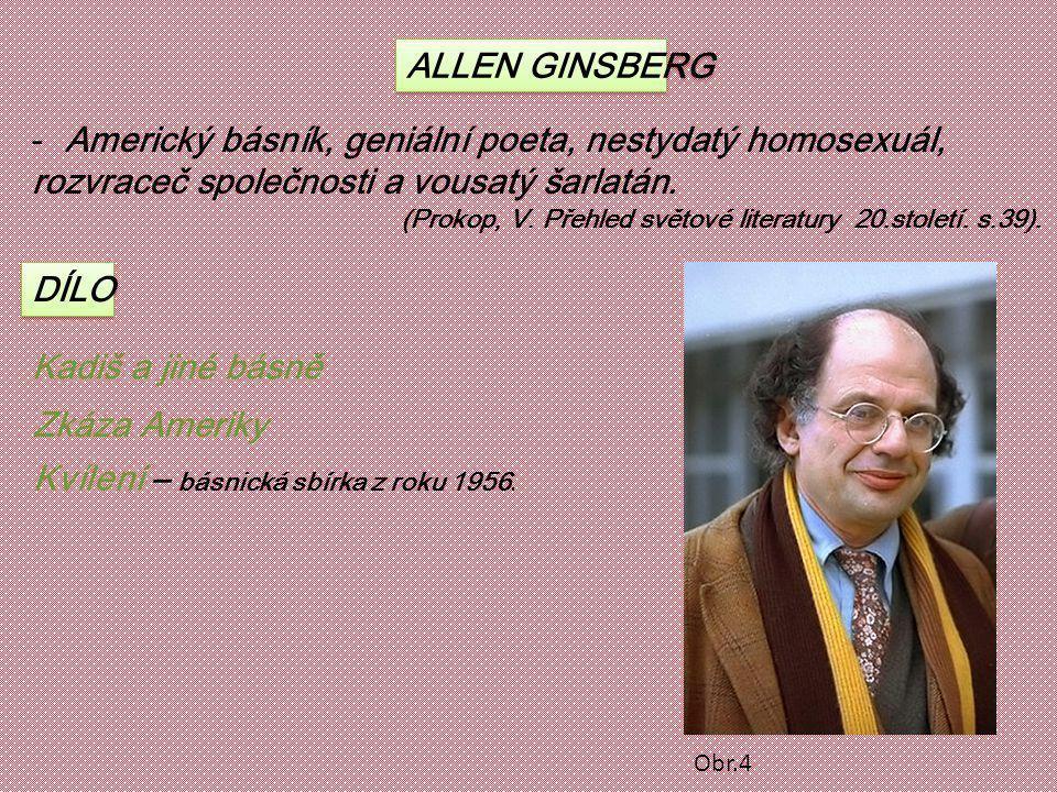 Americký básník, geniální poeta, nestydatý homosexuál,
