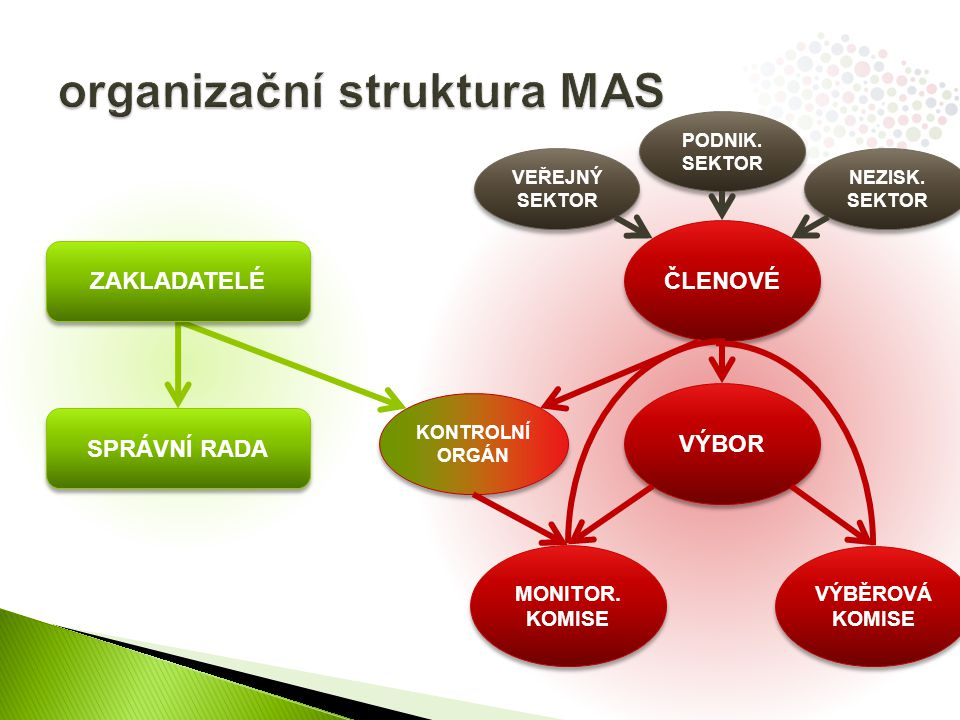 organizační struktura MAS