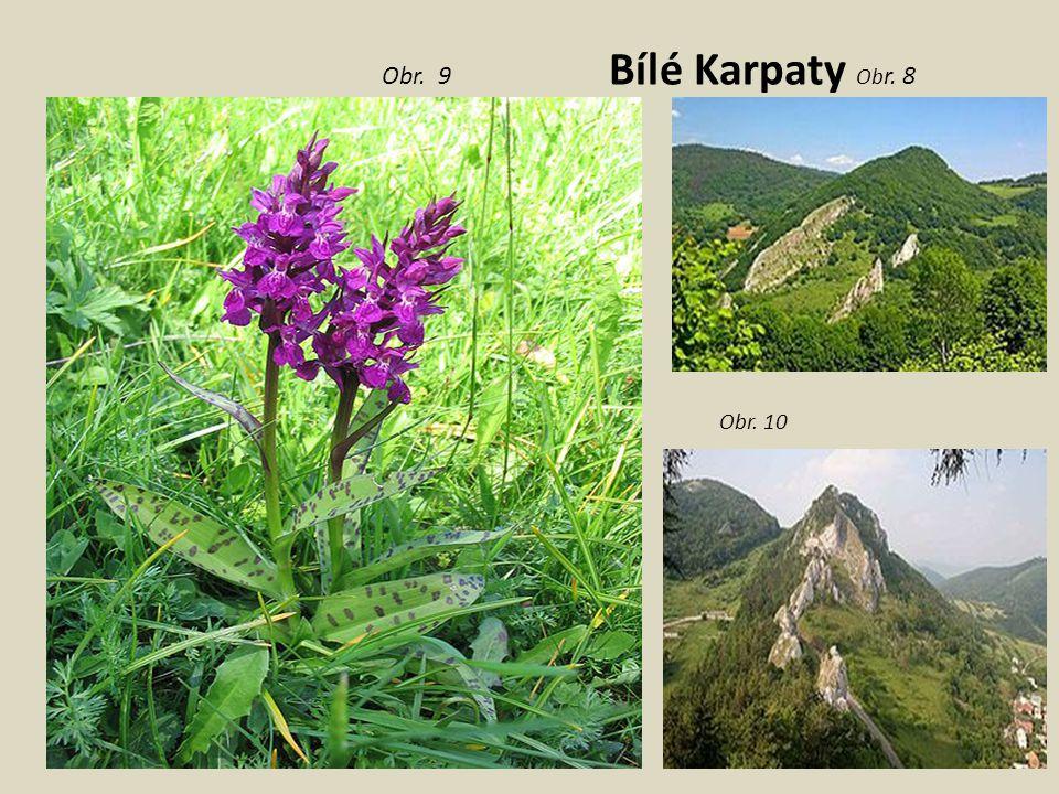 Obr. 9 Bílé Karpaty Obr. 8 Obr. 10