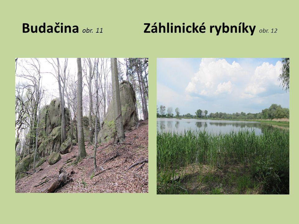 Budačina obr. 11 Záhlinické rybníky obr. 12