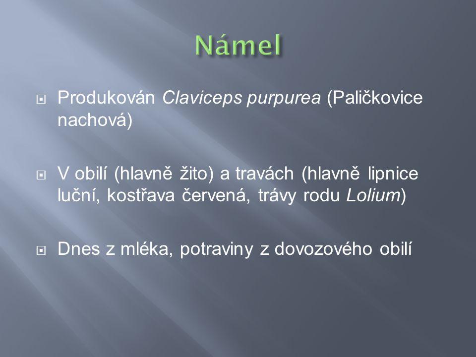 Námel Produkován Claviceps purpurea (Paličkovice nachová)