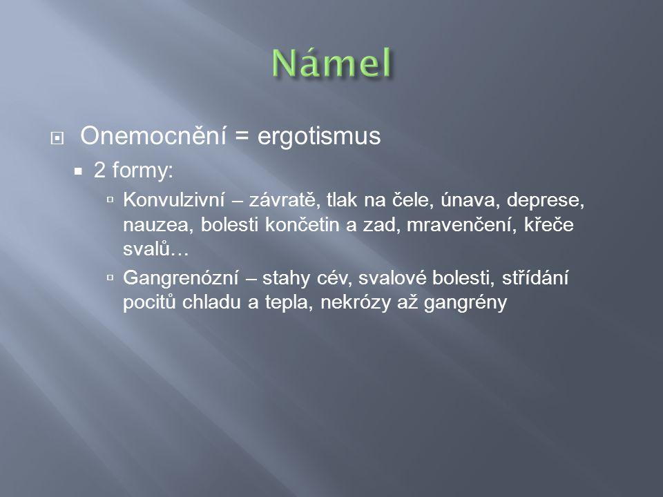 Námel Onemocnění = ergotismus 2 formy: