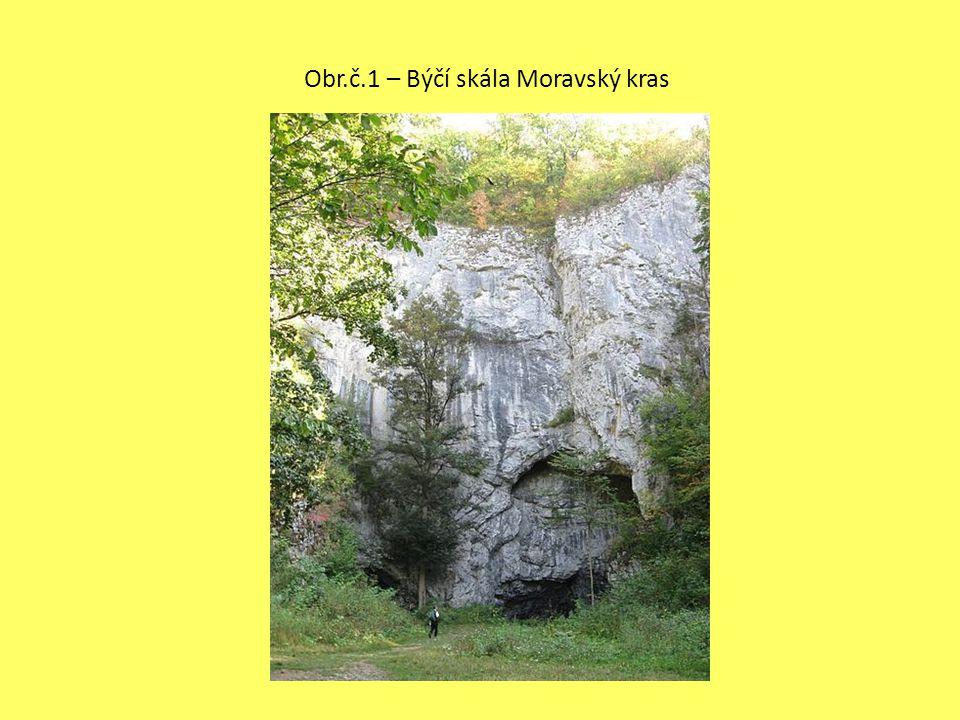Obr.č.1 – Býčí skála Moravský kras