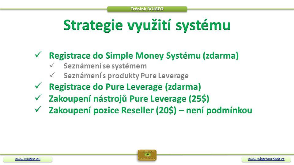 Strategie využití systému