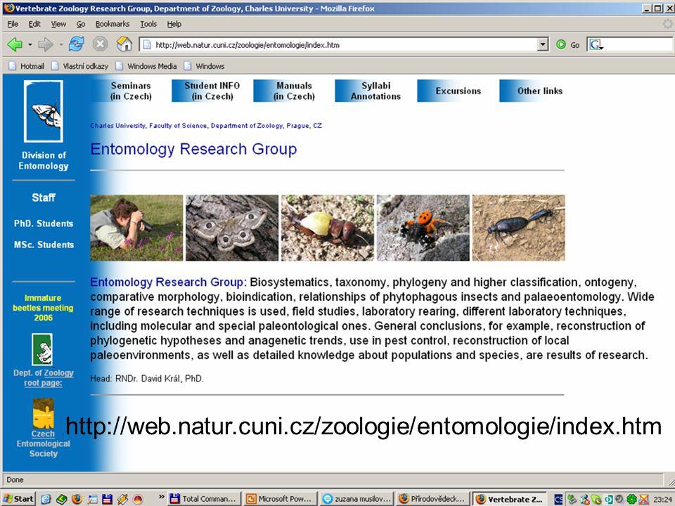 http://web.natur.cuni.cz/zoologie/entomologie/index.htm