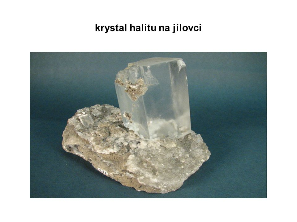 krystal halitu na jílovci