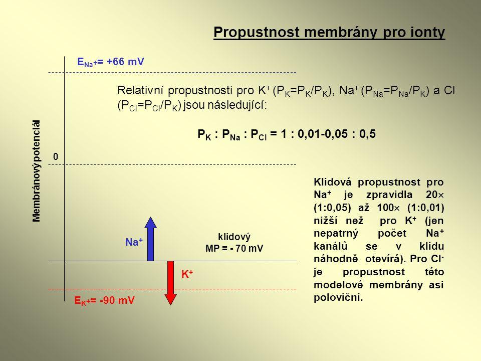Propustnost membrány pro ionty