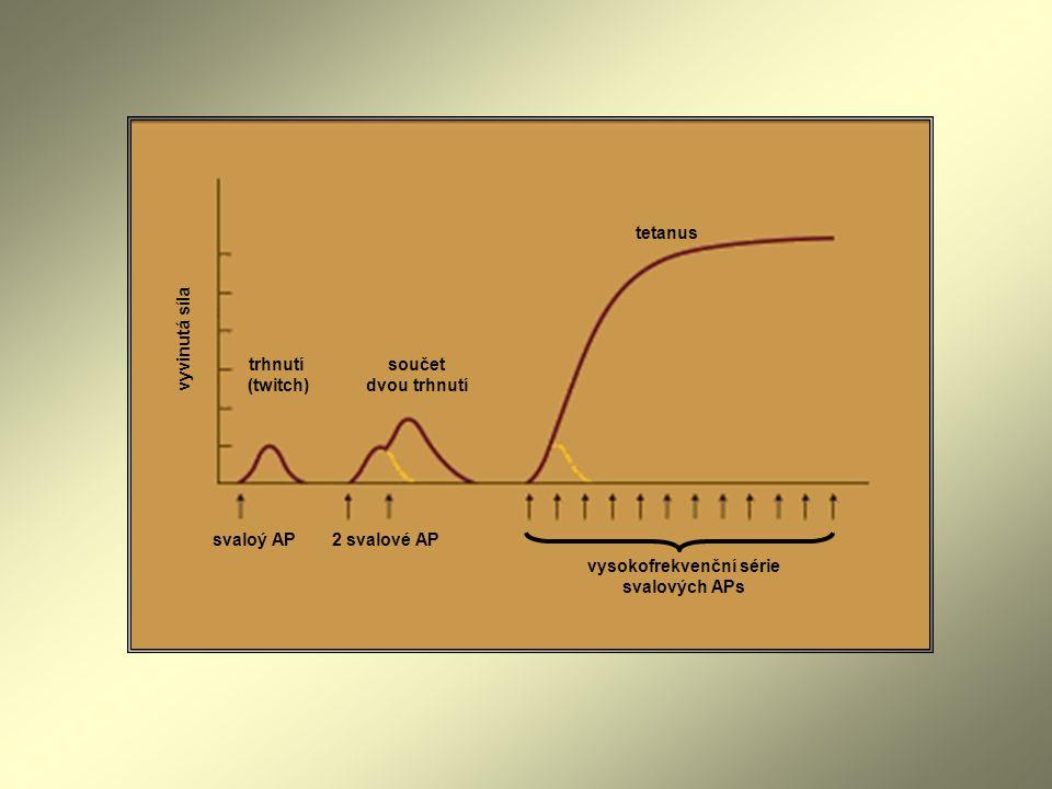 vysokofrekvenční série svalových APs