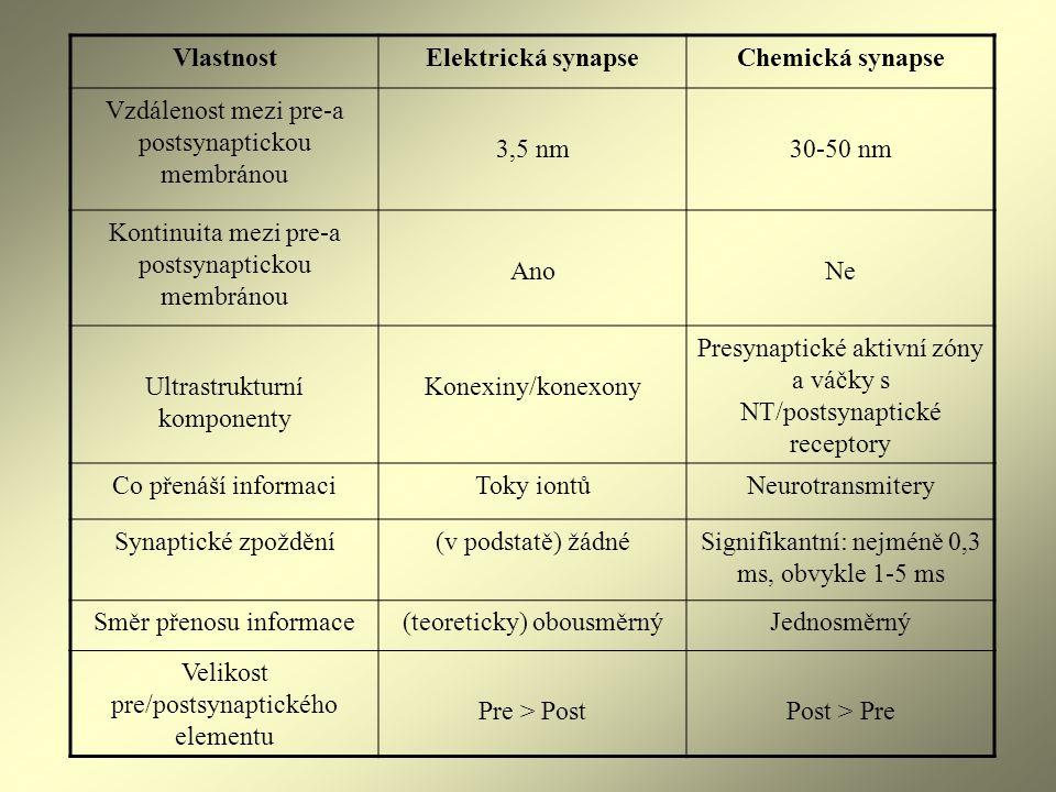 Vlastnost Elektrická synapse Chemická synapse