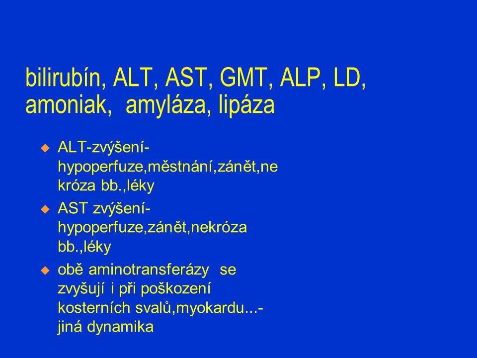 bilirubín, ALT, AST, GMT, ALP, LD, amoniak, amyláza, lipáza