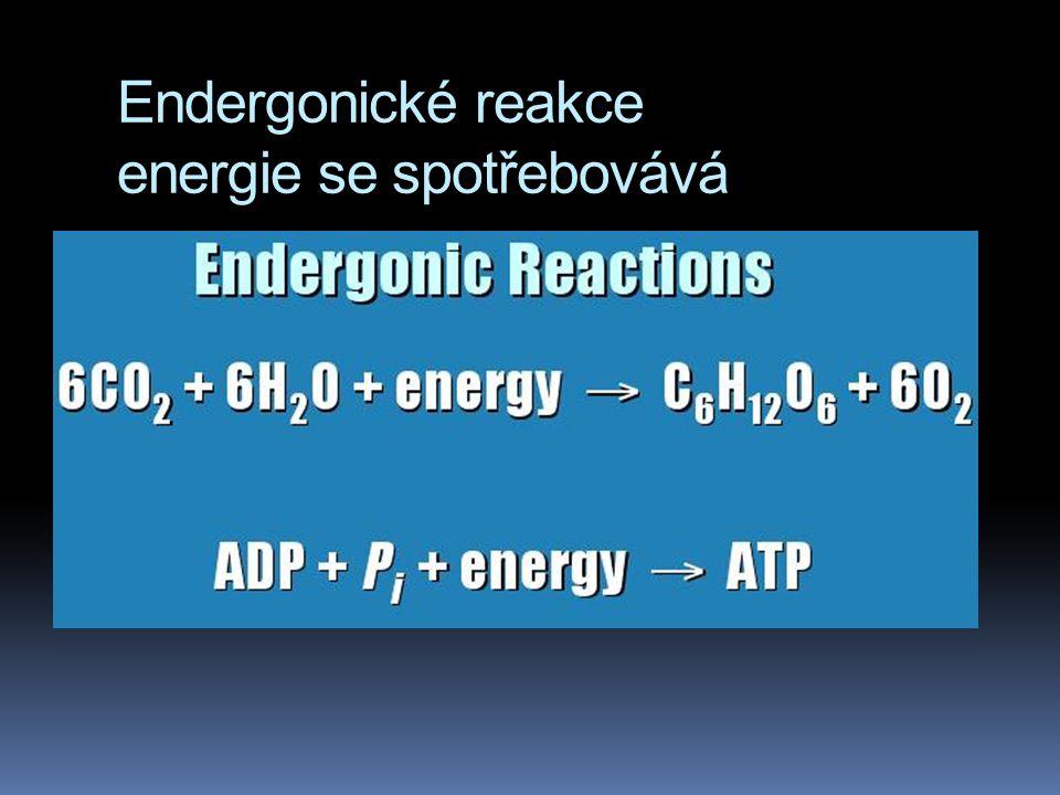 Endergonické reakce energie se spotřebovává