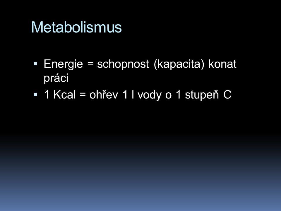 Metabolismus Energie = schopnost (kapacita) konat práci