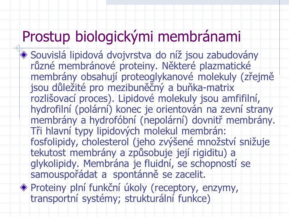 Prostup biologickými membránami