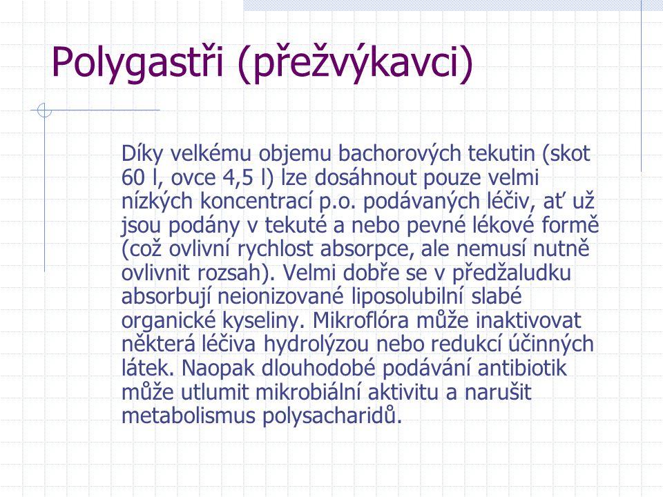 Polygastři (přežvýkavci)