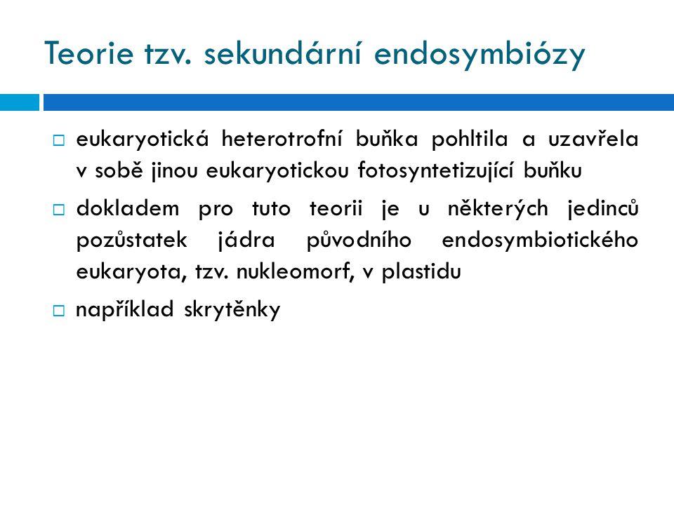 Teorie tzv. sekundární endosymbiózy