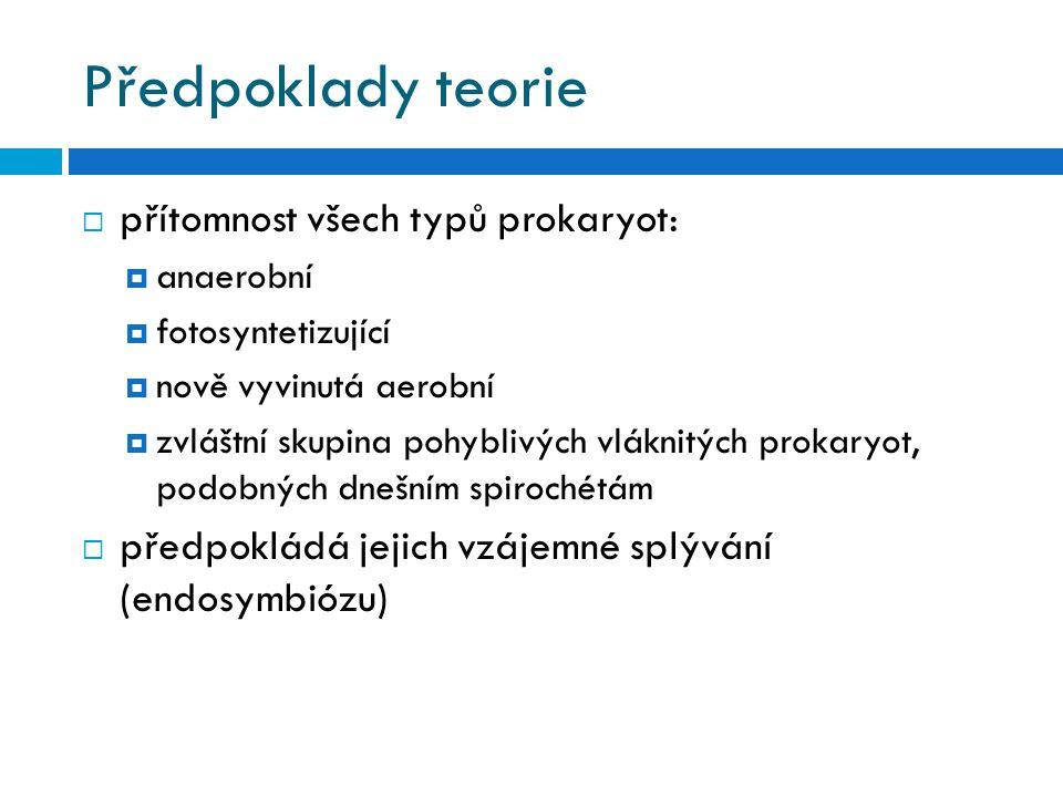 Předpoklady teorie přítomnost všech typů prokaryot: