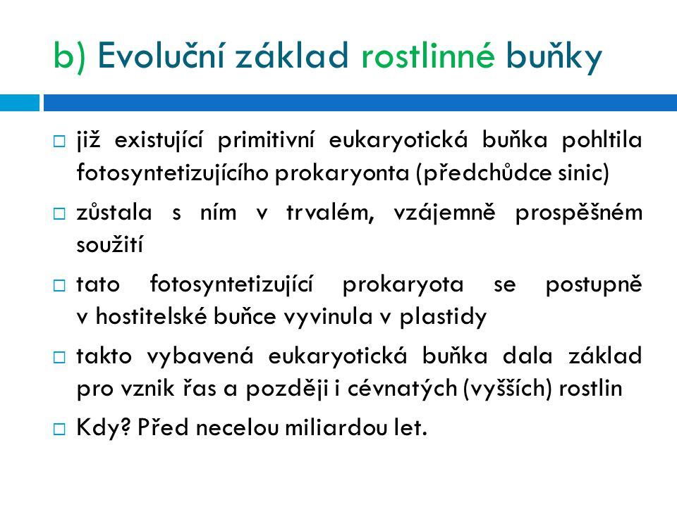 b) Evoluční základ rostlinné buňky
