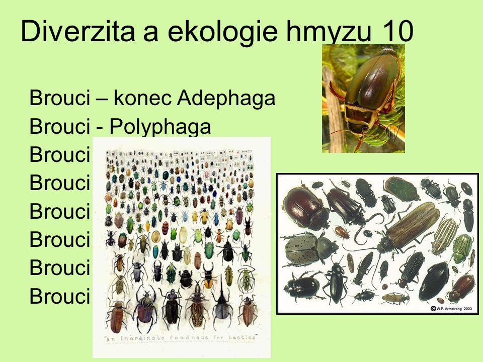 Diverzita a ekologie hmyzu 10