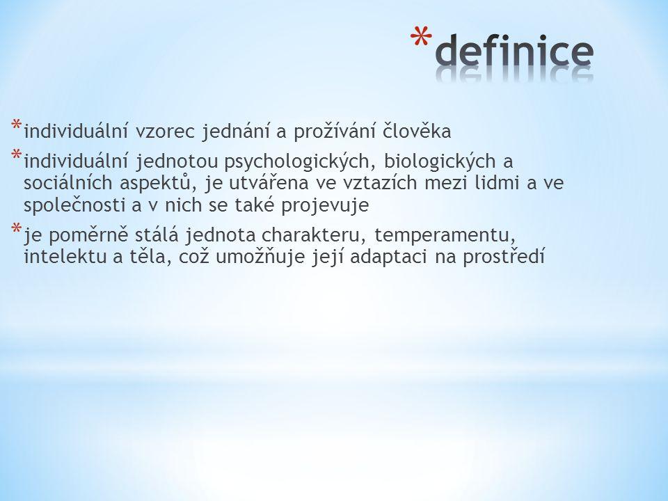 definice individuální vzorec jednání a prožívání člověka