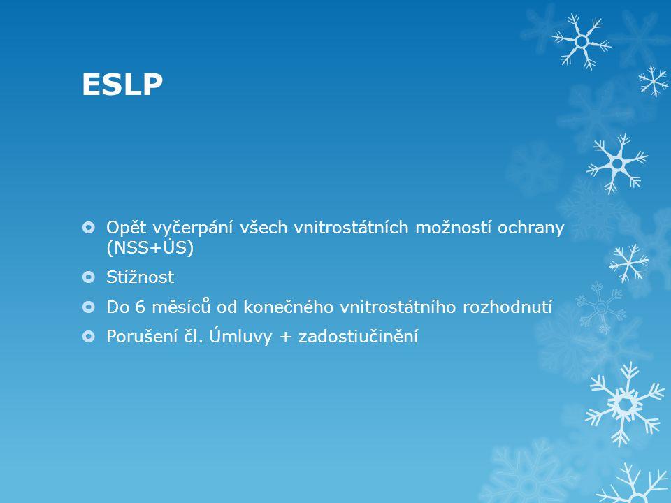 ESLP Opět vyčerpání všech vnitrostátních možností ochrany (NSS+ÚS)
