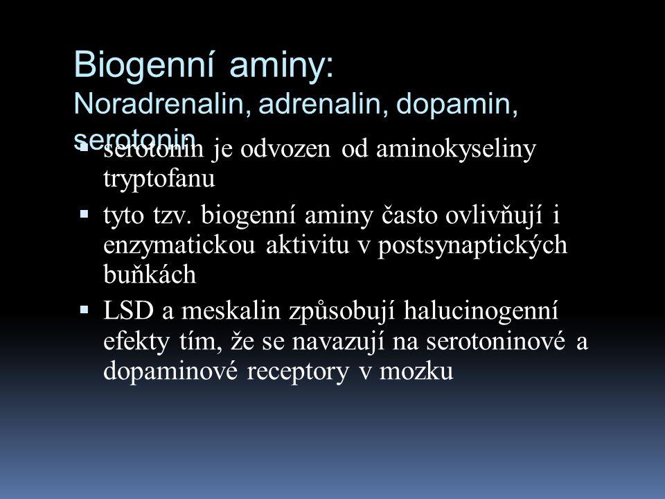Biogenní aminy: Noradrenalin, adrenalin, dopamin, serotonin