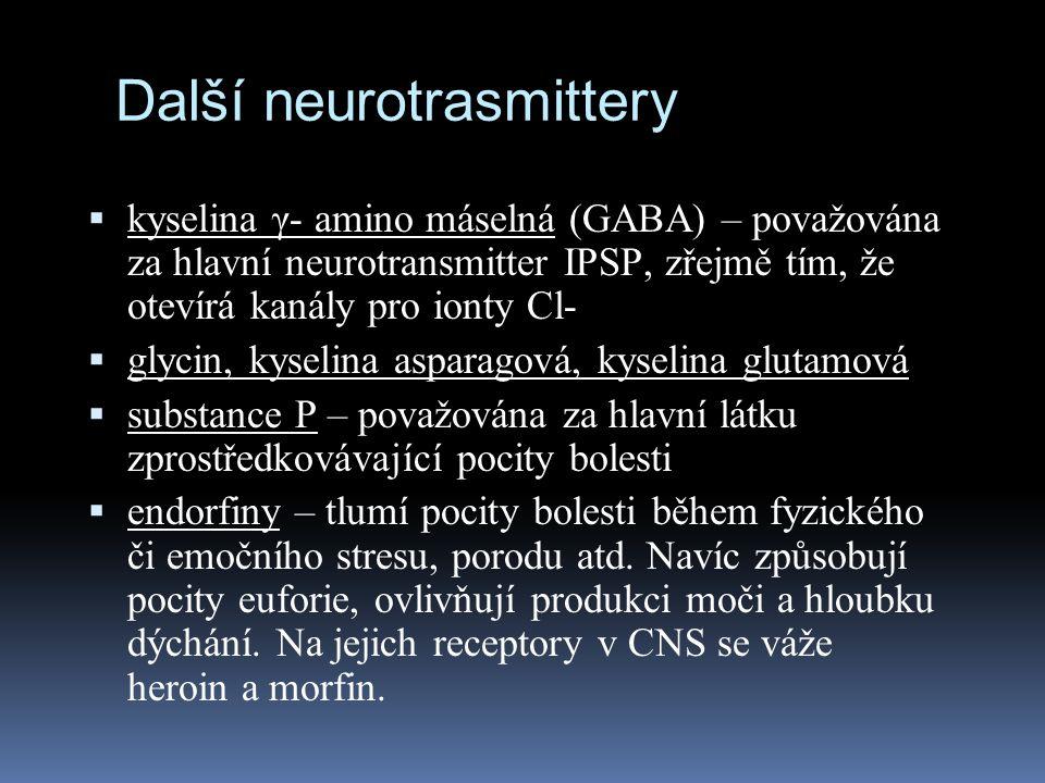 Další neurotrasmittery