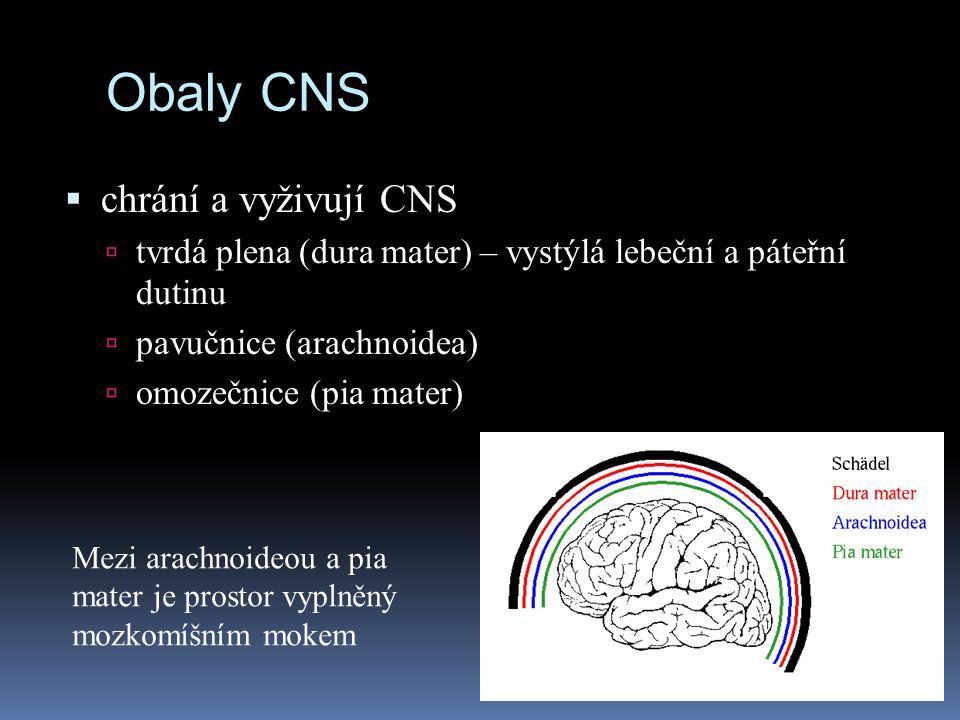Obaly CNS chrání a vyživují CNS