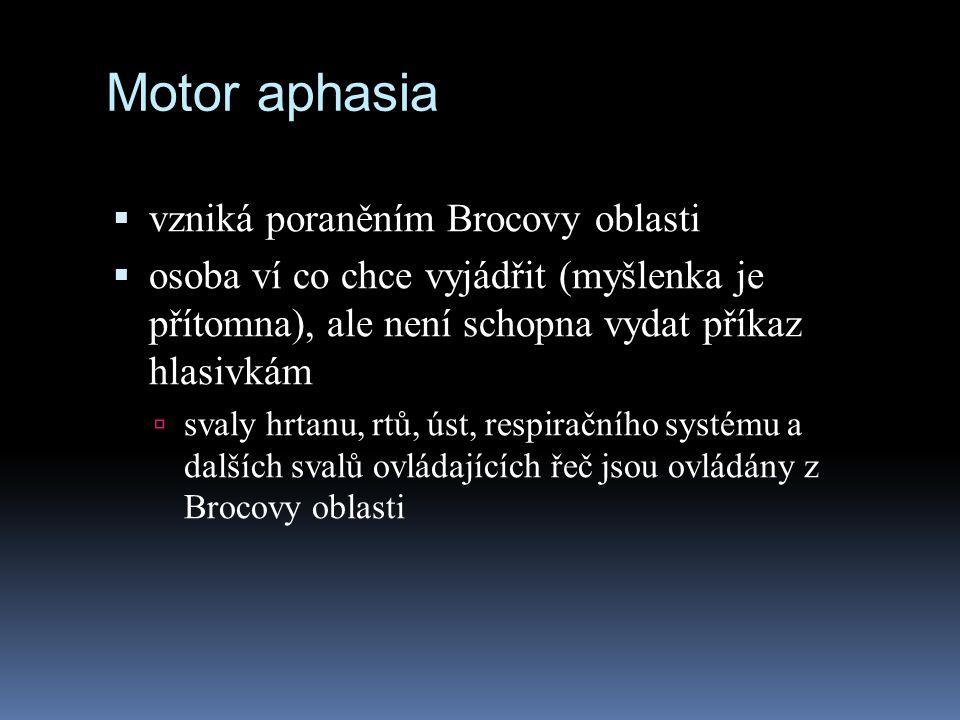 Motor aphasia vzniká poraněním Brocovy oblasti