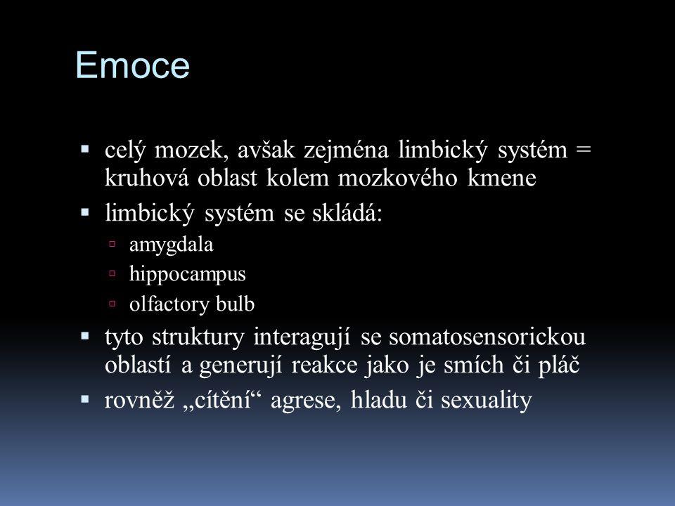 Emoce celý mozek, avšak zejména limbický systém = kruhová oblast kolem mozkového kmene. limbický systém se skládá: