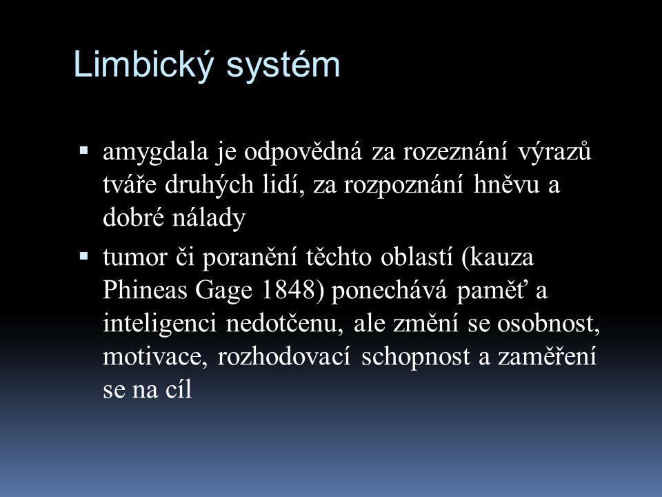 Limbický systém amygdala je odpovědná za rozeznání výrazů tváře druhých lidí, za rozpoznání hněvu a dobré nálady.