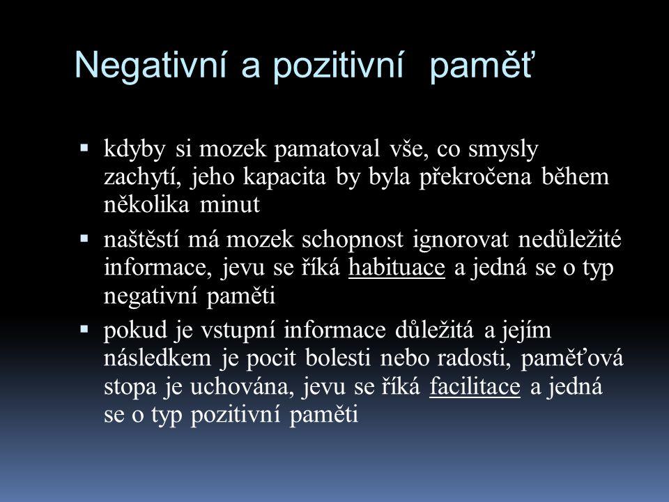 Negativní a pozitivní paměť