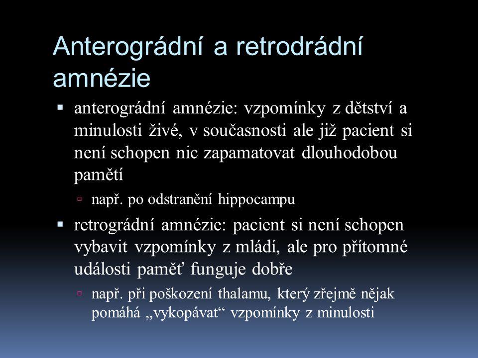 Anterográdní a retrodrádní amnézie