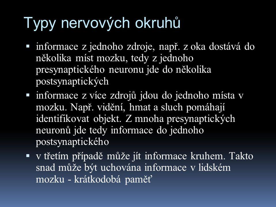 Typy nervových okruhů