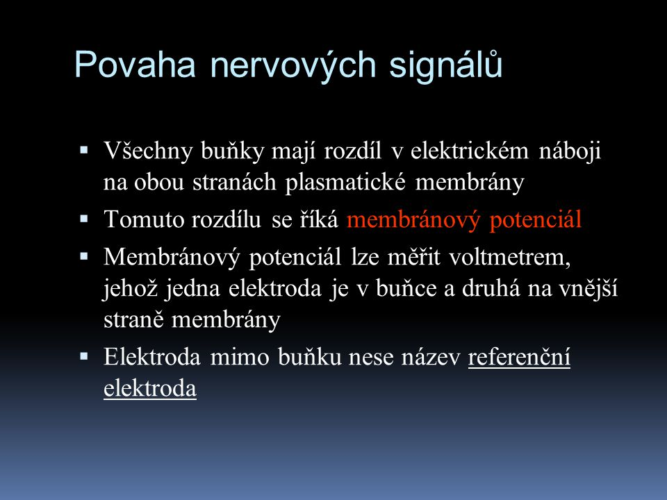 Povaha nervových signálů