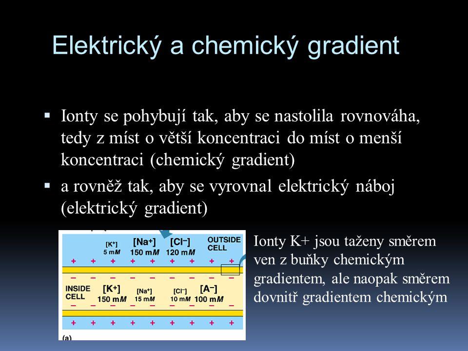 Elektrický a chemický gradient