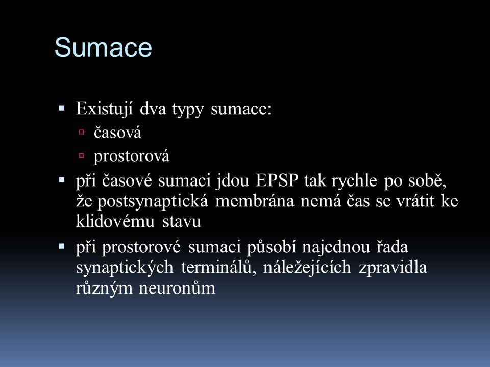 Sumace Existují dva typy sumace: