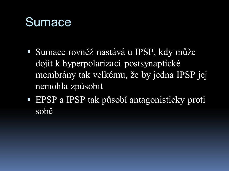 Sumace Sumace rovněž nastává u IPSP, kdy může dojít k hyperpolarizaci postsynaptické membrány tak velkému, že by jedna IPSP jej nemohla způsobit.