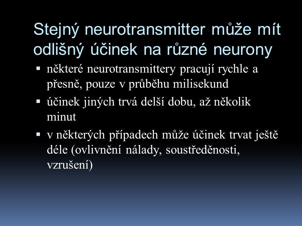 Stejný neurotransmitter může mít odlišný účinek na různé neurony