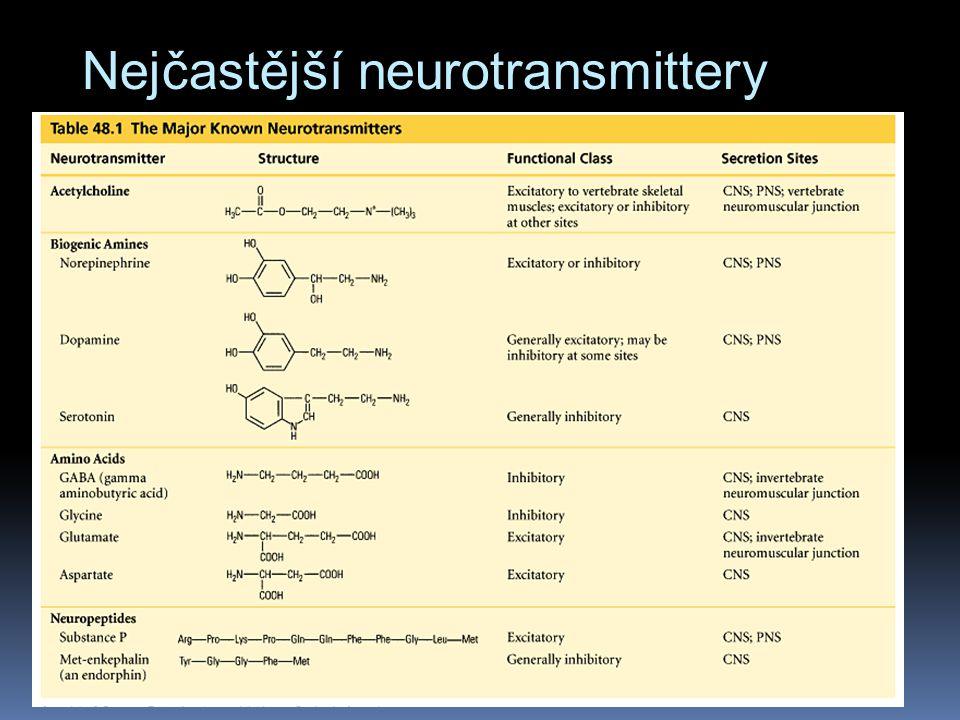 Nejčastější neurotransmittery