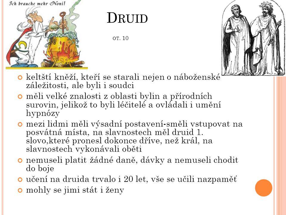Druid ot. 10 keltští kněží, kteří se starali nejen o náboženské záležitosti, ale byli i soudci.