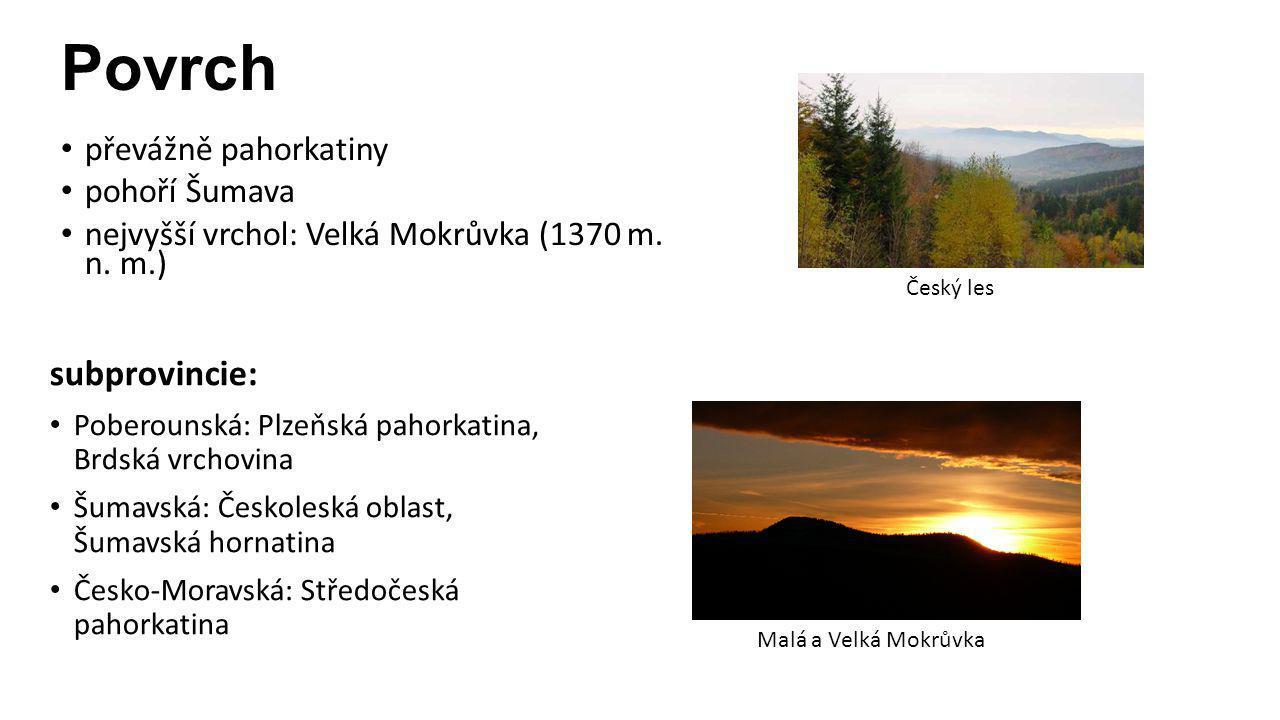 Povrch subprovincie: převážně pahorkatiny pohoří Šumava