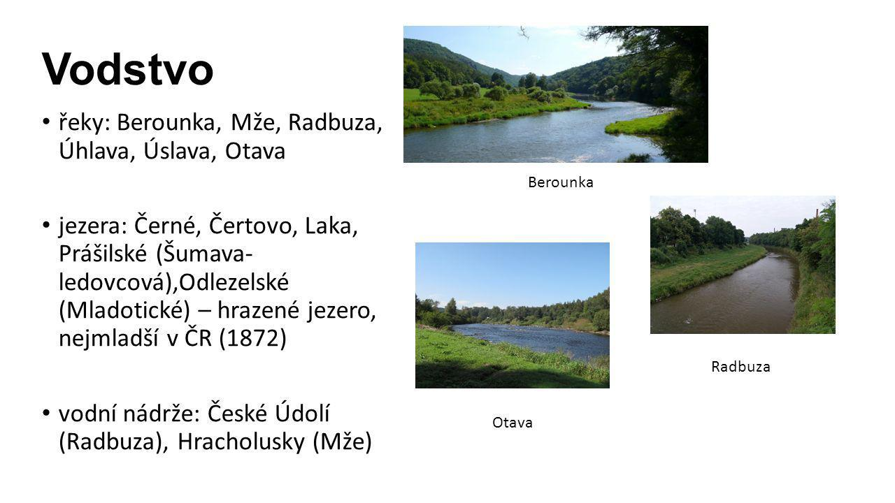 Vodstvo řeky: Berounka, Mže, Radbuza, Úhlava, Úslava, Otava