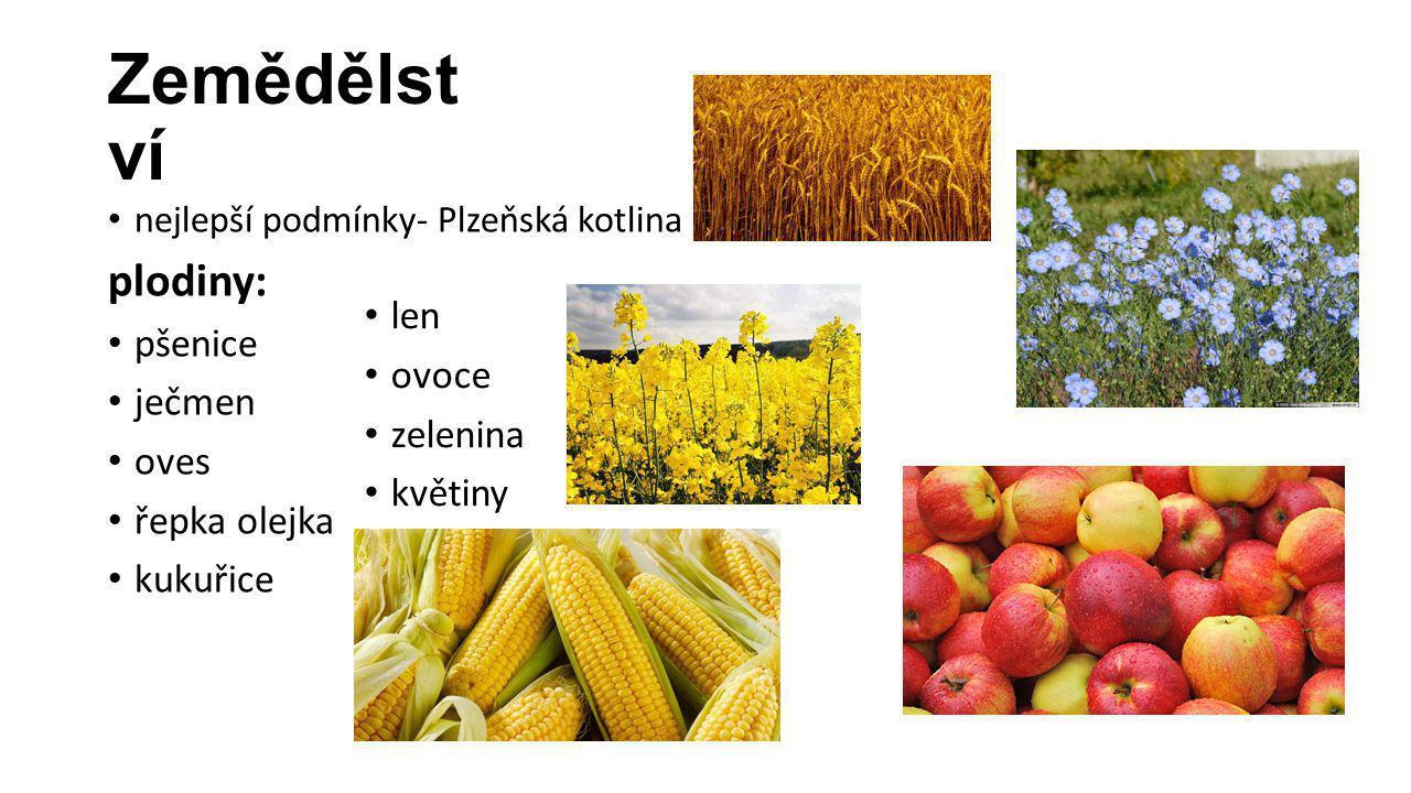 Zemědělství plodiny: pšenice ječmen len oves ovoce řepka olejka