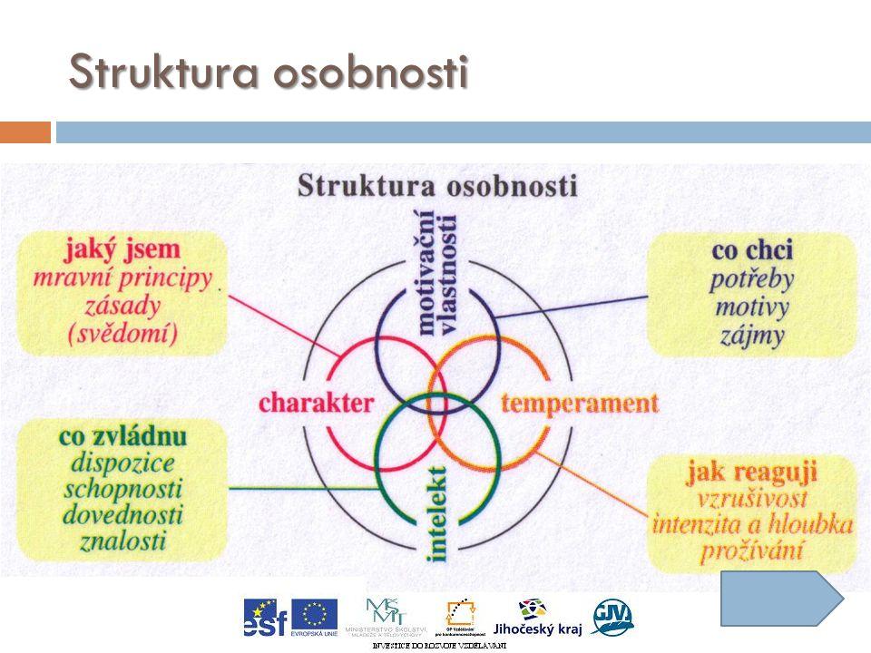 Struktura osobnosti