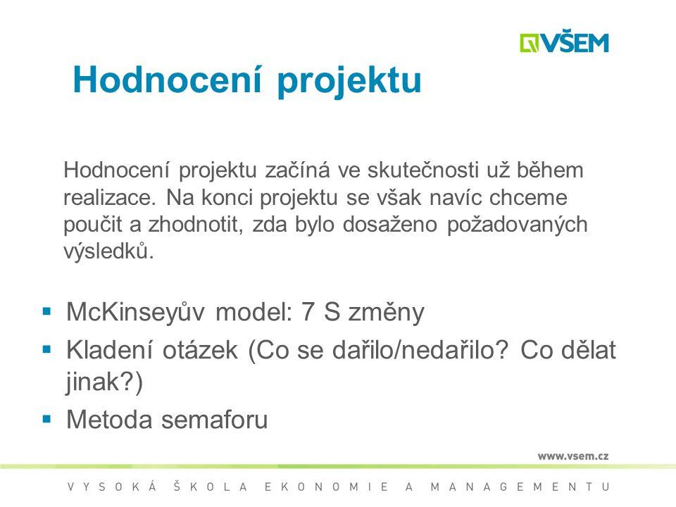 Hodnocení projektu McKinseyův model: 7 S změny