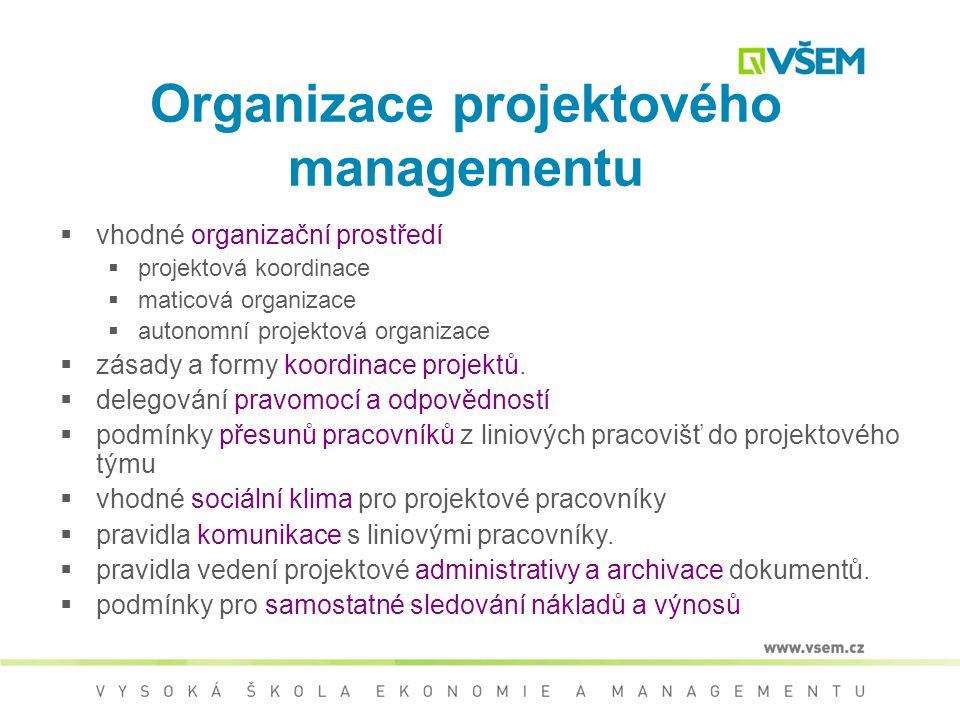 Organizace projektového managementu